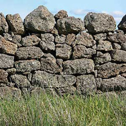 Dry stone wall near Warrion, Vic.